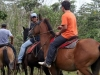 horsetrails3