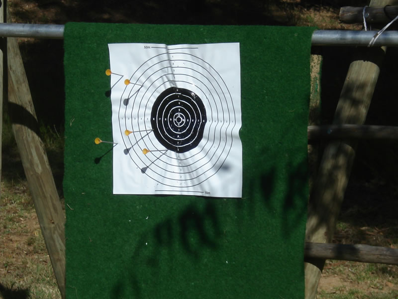 targetshooting5