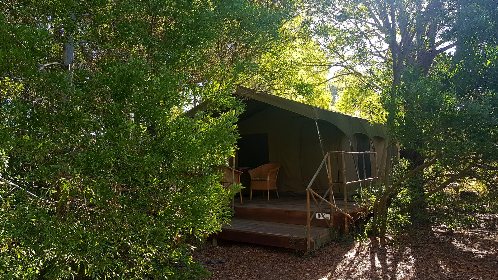 forest-walk-luxury-safari-tent