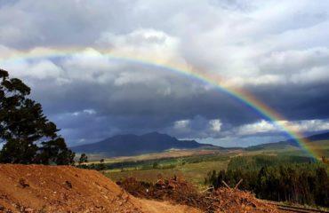 magical-rainbow-kunguru-lodge